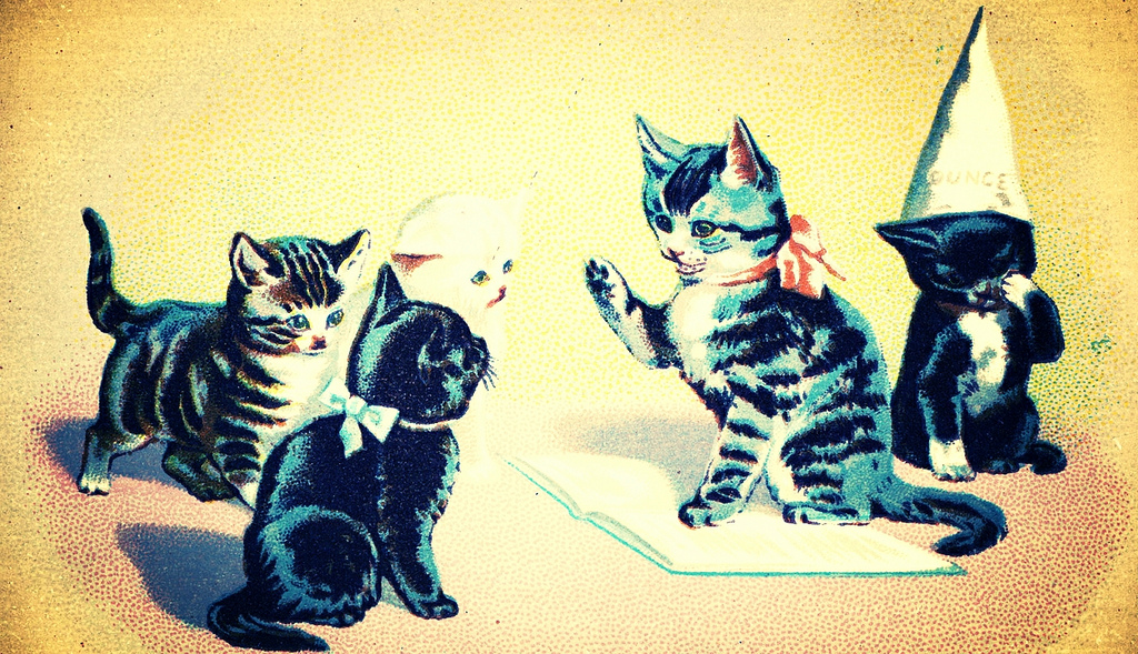 illustration of four cats, one of which is wearing a dunce cap